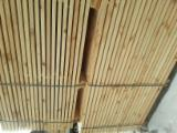 锯材及结构木材 苏格兰松 - 木板, 苏格兰松
