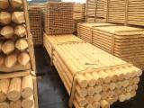 Find best timber supplies on Fordaq - MASSIV-DREV LLC - Pine poles & stakes, 8 x 250 cm