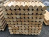 Softwood  Logs - SPRUCE Poles and Posts. Machine rounded, treated