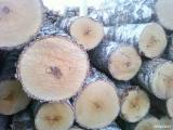 Hardwood  Logs For Sale - Selling Birch veneer logs from Russia