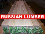 Spruce Wall Panelling from Russia's North West