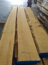 Hardwood  Unedged Timber - Flitches - Boules - Maple 55 mm KD