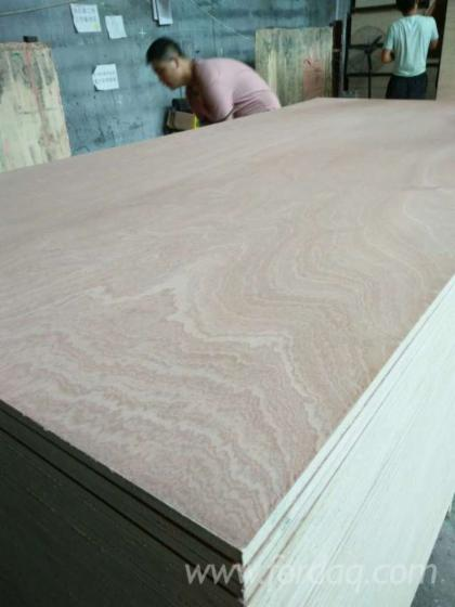 Red-plywood-Sapelle-plywood-Okoume-plywood--red-cedar-plywood--Caobilla