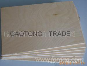 18MM-C-2-White-birch-plywood--Cabinets-grade-birch-plywood--UV-birch