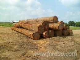 Quality-Azobe-logs-and-sawn-timbers-from