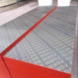 1 Ply Solid Wood Panel, Billian
