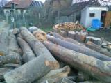 Buy Or Sell  Firewood Woodlogs Cleaved Romania - Beech Firewood/Woodlogs Cleaved