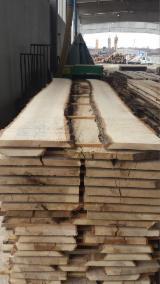 Unedged Hardwood Timber - Fresh Cut Unedged Oak Lumber EU Origin