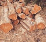 Madera Aserrada Y Reconstituida América Del Sur - teak round wood
