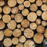 Firewood, Pellets and Residues - Beech, White Ash, Oak Firewood/Woodlogs Cleaved -- mm