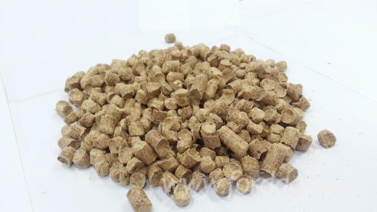 Wood Pellets Wholesale ~ Wholesale dinplus maritime pine wood pellets from ukraine