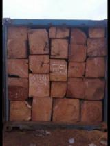 Tropical Wood  Logs - Doussie square logs from Ghana