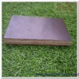 Plywood - Keruing / Eucalyptus Film Faced Plywood