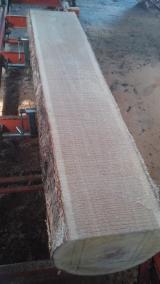 Laubschnittholz, Besäumtes Holz, Hobelware  Zu Verkaufen Polen - Eichenschnittholz, x30 Klasse 0-1