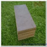 覆膜胶合板(黑膜), 筒状非洲楝木