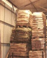 France Sawn Timber - Walnut Squares France