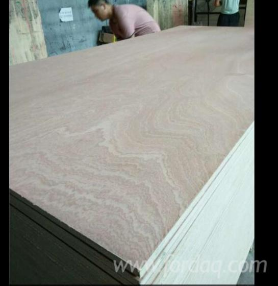 Furniture grade sapelli plywood for Furniture grade plywood