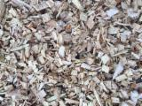 Wood Chips From Forest - Softwood Wood Chips from Forest, any size