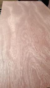 Sapelli face/back plywood