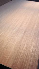 3.6mm red engineered face/back plywood