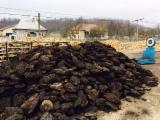 Brichete Din Cărbune - depozit lemn de foc, carbuni