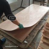 Sapelli plywood door skin panels