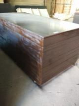 Black Film Faced Poplar Plywood For Sale