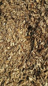 Pine  - Redwood Wood Chips From Forest G 100 mm