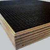 覆膜胶合板(棕膜), 白杨