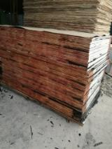Plywood – Kahverengi Film Kaplı, cd_specieHard_Dark Red Meranti