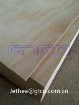 天然胶合板, Radiata Pine