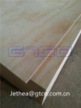 Radiata pine face back plywood