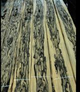 Tropical Wood  Sawn Timber - Lumber - Planed Timber - Want to Buy Royale Ebony Dimension Lumber