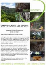 null - Camphor Laurel Logs