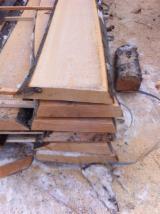 Hardwood  Unedged Timber - Flitches - Boules - Beech  Loose from Ukraine, Karpaten
