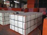 Plywood For Sale - Supply Film Faced Plywood Poplar core WBP Glue