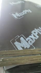 Wholesale  Film Faced Plywood Brown Film - MaxPly Poplar Film Faced Plywood