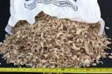 Energie- Und Feuerholz Sägehackschnitzel - Laubholz Sägehackschnitzel 10-70 mm