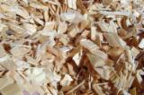 Thailand Supplies - Wood Chips From Pine and Oak