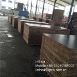 Good quality Film faced plywood for construction/Marine/shuttering plywood