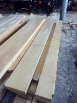 Hardwood  Unedged Timber - Flitches - Boules - Beech  Loose Russia