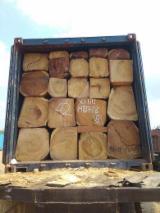 Tali / Doussie / Okan / Sapelli Logs