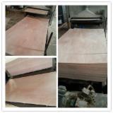 天然胶合板, 白橡木