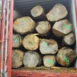 null - Import white ash North America