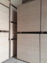 Plywood - Furniture Eucalyptus Plywood up to 70mm (thickness)