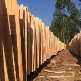 Tranchage Vietnam - Vend Placage Naturel Eucalyptus Dosse, Loupe