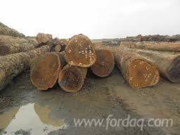 Quality-iroko--round-logs-and