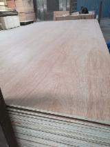 Laminated Plywood Poplar core BB/CC Grade E1 Glue
