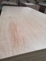 Plywood - BB/CC Grade Commercial Plywood E1 Glue