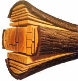 Nadelschnittholz, Besäumtes Holz Kiefer Pinus Sylvestris - Rotholz Zu Verkaufen - Bretter, Dielen, Kiefer  - Rotholz, FSC